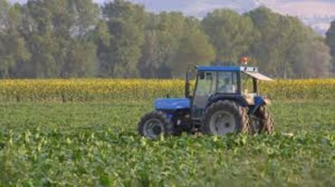 agricoltural.jpg