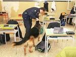 cane-antidroga-scuola.jpg