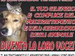 Arca_della_Valle.png