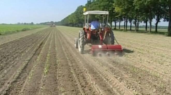 agricoltura_trattore.jpg