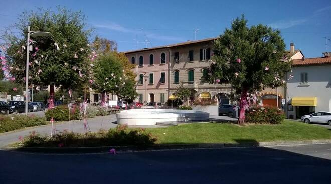 Piazza_La_Vergine_in_rosa2.jpg