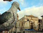 Foto_Gabbiani_Piazza_Duomo_Ruffini_CP.jpg