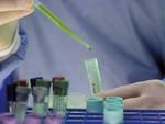 vaccino_laboratorio.jpg