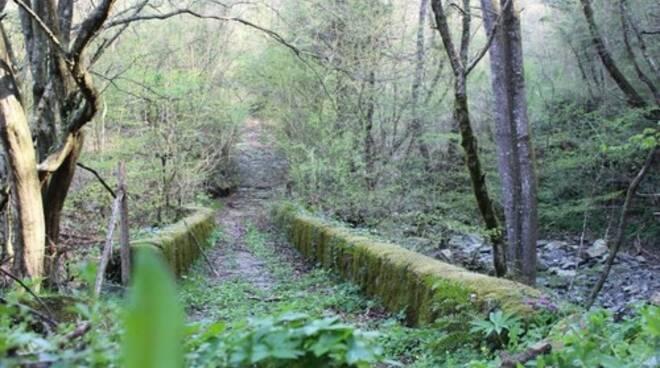 trekking-lunigiana-toscana-via-volto-santo-54.jpg