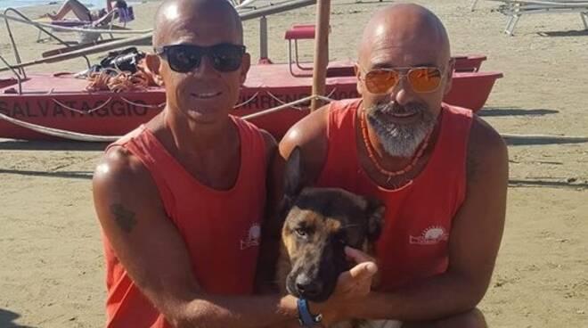 dog_beach_tirreno_2000.jpg