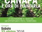 manifesto_canapa_2016-01.jpg