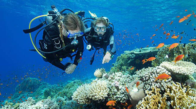 orologi-subacquei-sub-diver.jpg