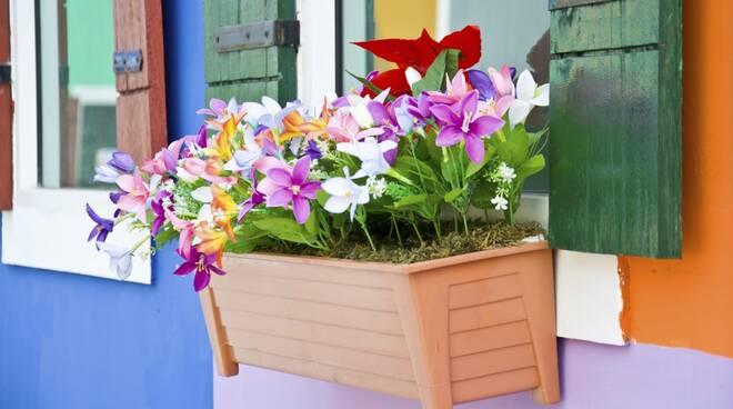fiori_balcone.jpg