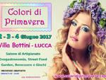 colori_di_lucca.jpg