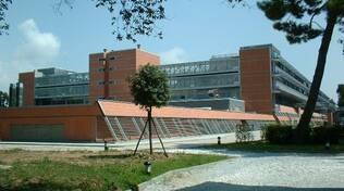 ospedale-versilia.jpg