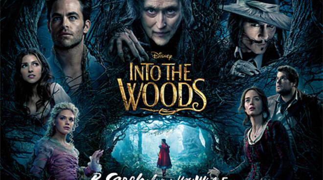 Into-The-Woods_3142052c.jpg