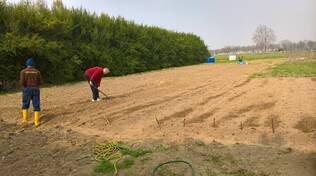 agricoltura-sociale5.jpg