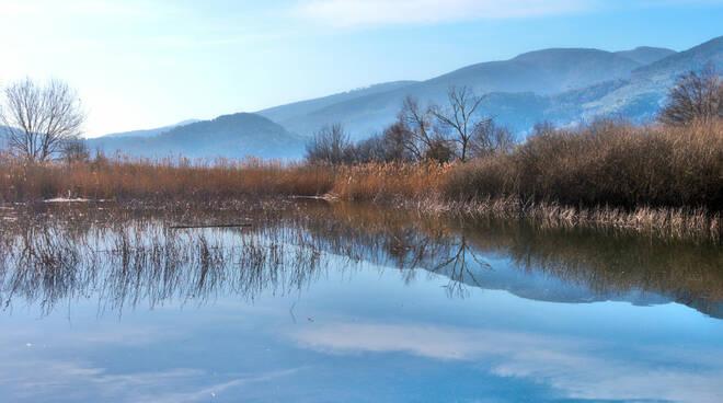 oasi-wwf-bosco-bottaccio1.jpg