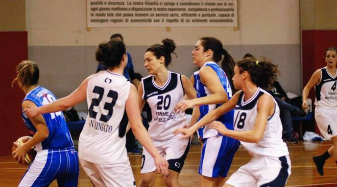 Basket_San_Miniato.jpg