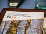 Rapporto_foreste.jpg