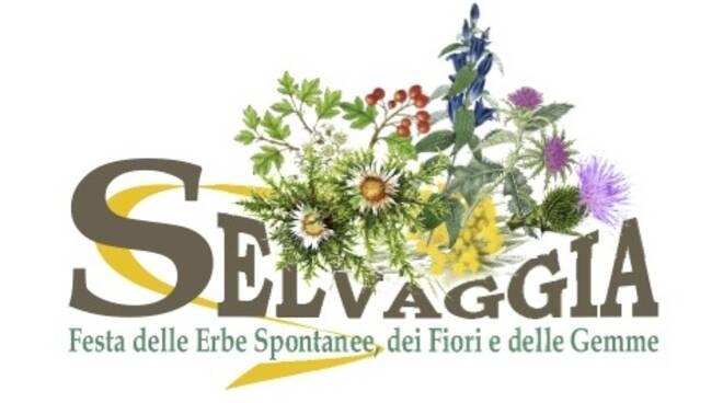 LOGO_SELVAGGIA_definitivo_copia.jpg