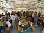 scacchi-garfagnana1.jpg