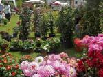 20180602_giardino-fiorito.jpg