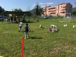 scanpagnando_parco_cinofilo.jpg