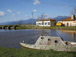 Lago_Massaciuccoli1.jpg