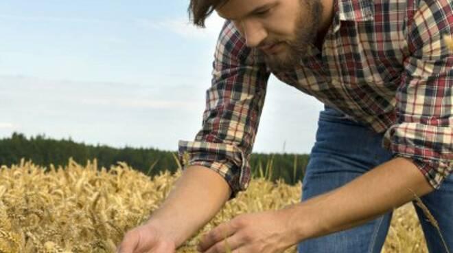 Giovane_agricoltore.jpg