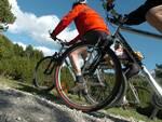 mountain_bike_generica.JPG