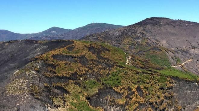 Foto-aeree-Monte-Serra-incendio-settembre-2018-8.jpg