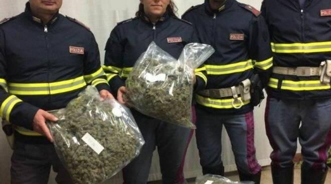 LUCCA_-_Mette_il_pitbull_a_guardia_di_20_chili_di_droga_-_arrestato_dalla_Polstrada._FOTO_2.jpg