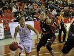basket_lucca.png