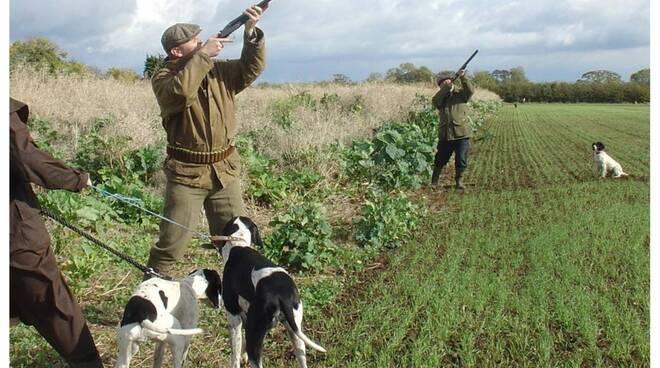 caccia_agricoltura.jpg