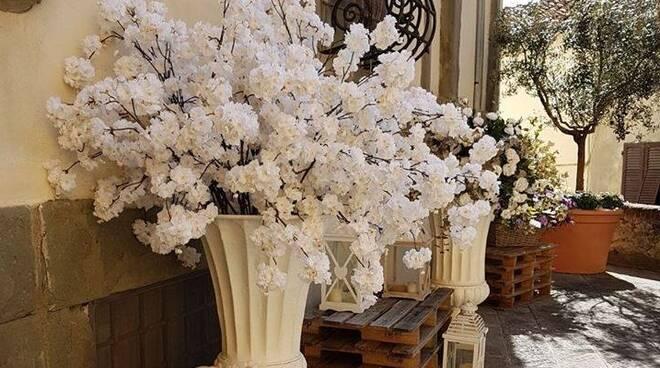 fiori_pecore.jpg