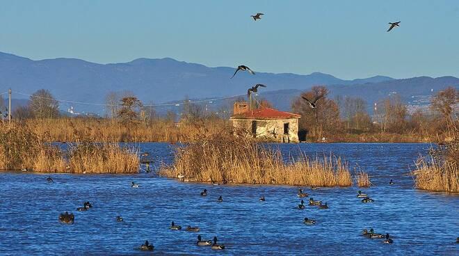 lago-della-gherardesca.jpg