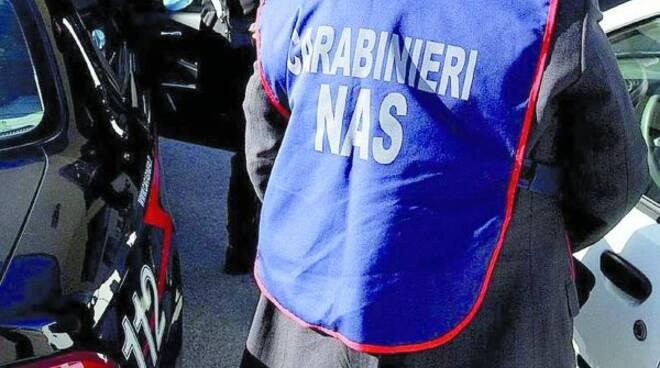 2-controlli-carabinieri-nas-e15275421935271.jpg