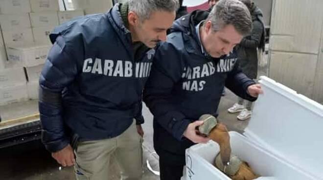 carabinieri_nas.jpg