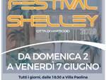 shelley__1.jpg