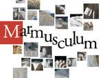 marmusculum.jpg
