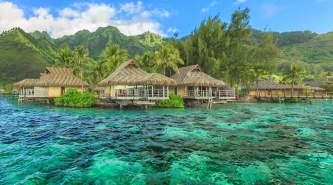 4853-Polinesia.jpg