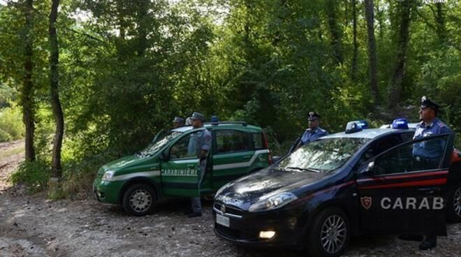 carabinieri-Forestale.jpg