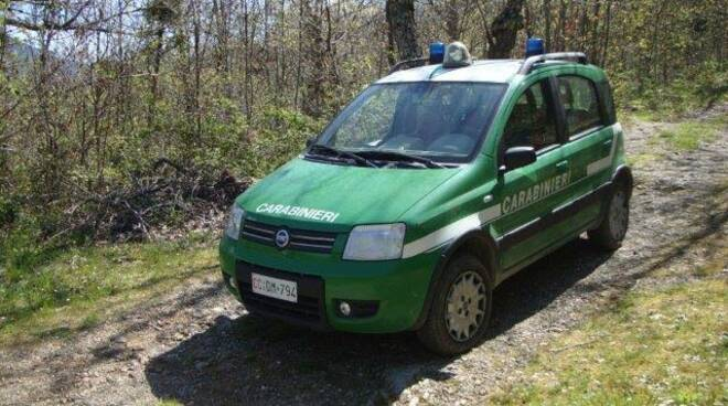carabinieri-forestali-cz.jpg