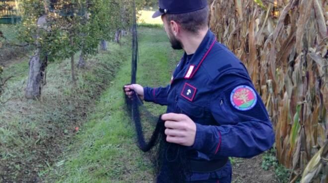 carabinieriuccellagione12.jpg