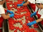 industria-alimentare-300x224.jpg