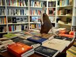 libreriabaroni.jpg