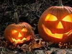 zucche_halloween.jpg