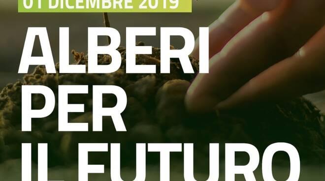 Alberi_per_il_Futuro.jpeg
