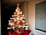albero di Natale zona distretto Asl Valle del Serchio