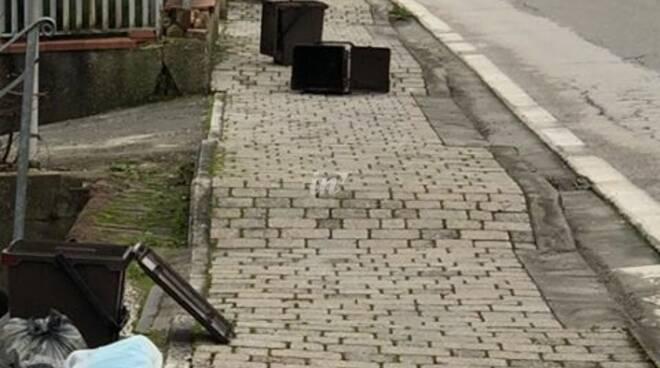 bidoncini rifiuti organico rotti a ponte a egola di san miniato