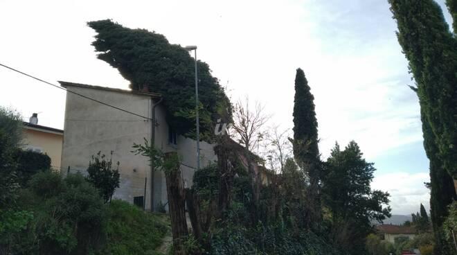 notte di vento forte tra 21 e 22 dicembre i danni sul cuoio