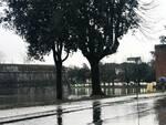 Nubifragio a Lucca, disagi e allagamenti