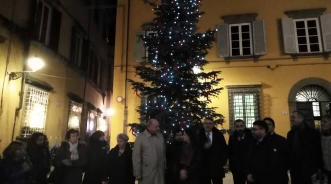 Un albero di Natale contro le violenze alle donne