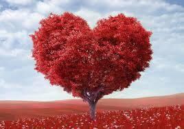 albero amore san valentino